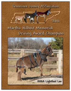 Matha Wilhoit Memorial Driving Award