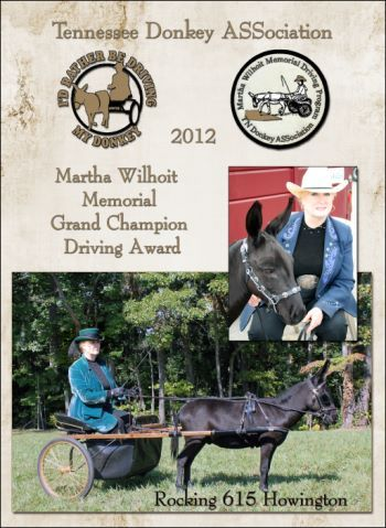 Grand Champion Driving Donkey