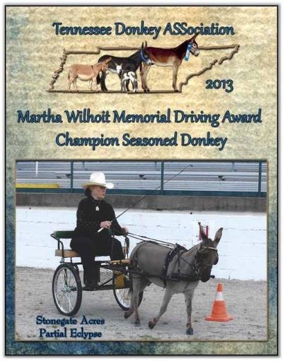 Mookie, 2013 Tennessee Martha Wilhoit Memorial Driving Award Champion Senior Donkey