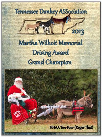 HHAA Ten-Four (Roger That), 2013 Martha Wilhoit Memorial Driving Award Grand Champion!