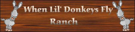 When Lil Donkeys Fly Ranch