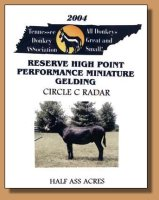 2004 Tennessee Donkey ASSociation Reserve High Point Performance Gelding